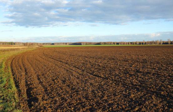 Terreno Agricolo in Fraz. Santa Croce